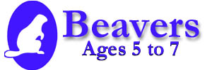 Beavers meet Tuesdays at Dan Knott School